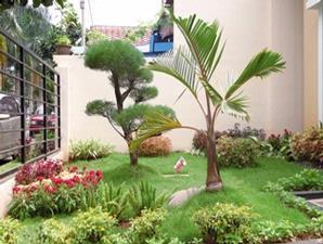 Taman Minimalis Sederhana on Desain Taman Belakang Rumah