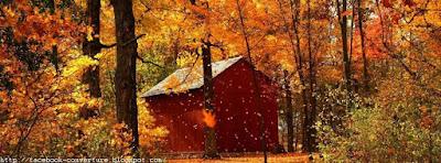 Une Belle couverture facebook automne