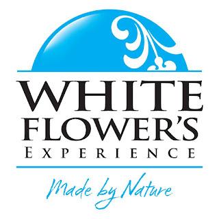 http://www.whiteflower.com.pl/pl/