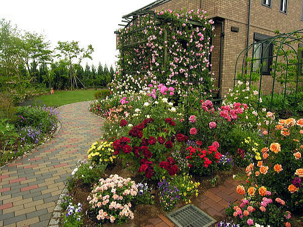 Home design furniture lighting rose garden for Small rose garden plans