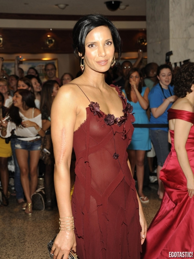 Hot Photos 2013: Padma Lakshmi see-through red gown.