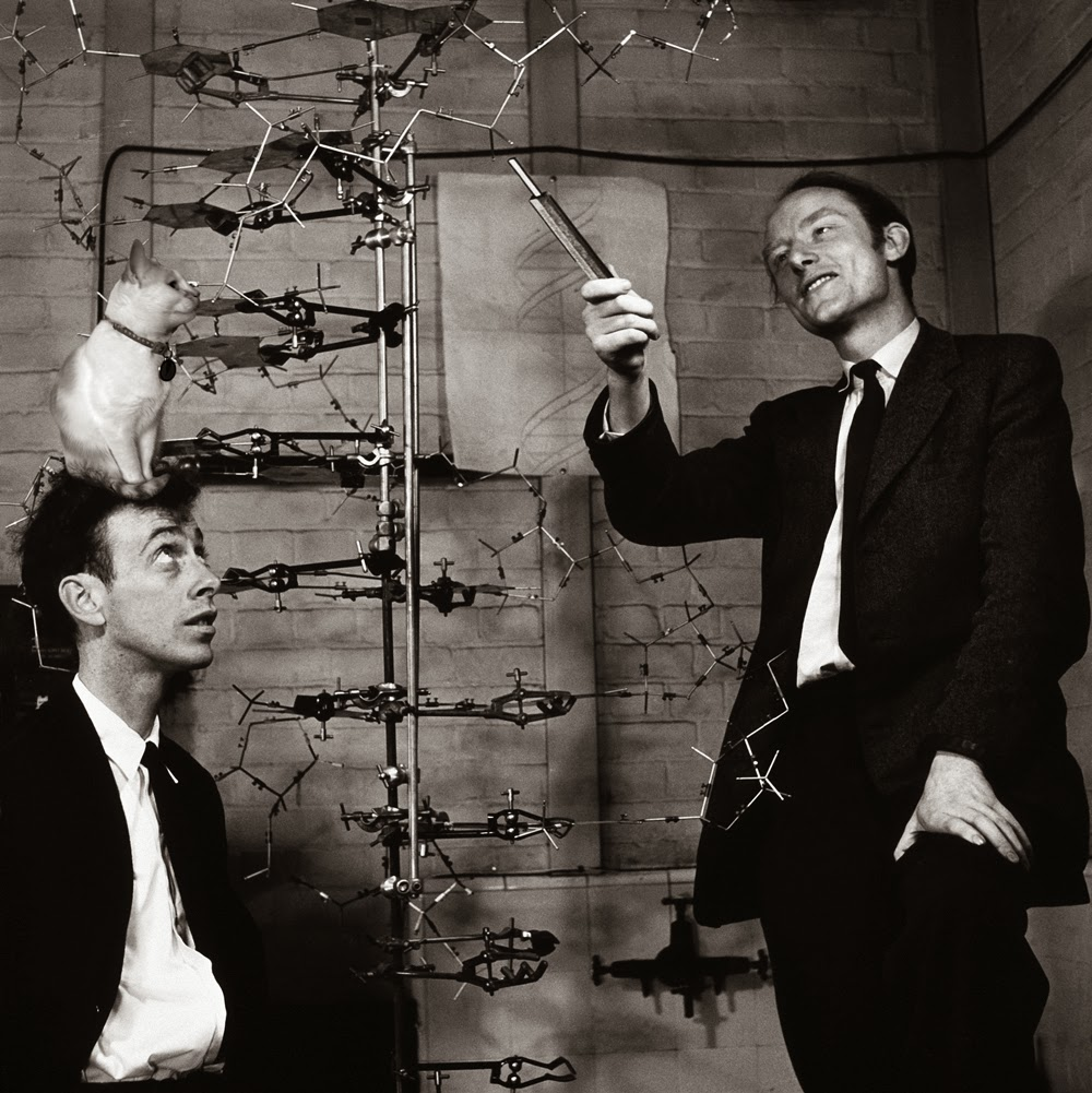 Watson and Crick DNA double helix model 1953 Chloe cat science Josef Spalenka