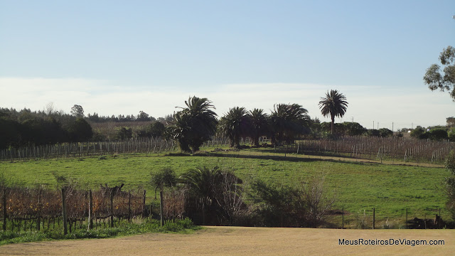 Bodega Bouza - Montevidéu, Uruguai