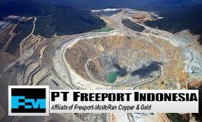 PT Freeport Indonesia - image source : ptfi.co.id