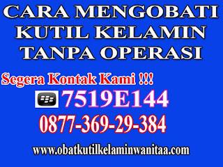 Obat Kutil Kelamin di Lampung