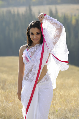 trisha_hot_modern_saree_photos+(6).jpg (1064×1600)