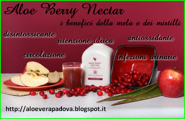 Aloe berry nectar-Aloe da bere al mirtillo