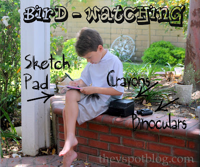 little boy, bird watching, sketch pad, note book, brick planter, binoculars, cute, patio