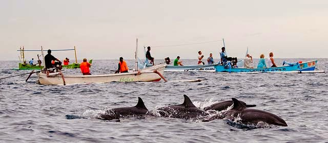 Tempat Wisata Pantai / beach Lovina di Bali yang Eksotik