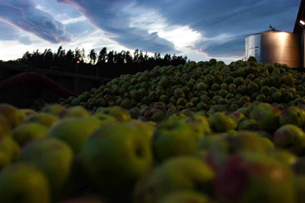 Cider Sunday in the Garden With Cider Expert Jeff Russel from Rowan Imports