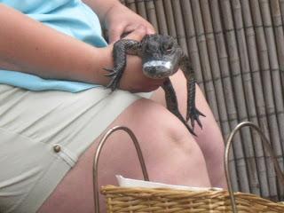 Alligator Farm St.Augustine Florida