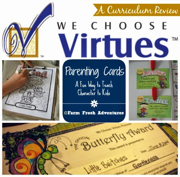 we choose virtues parenting cards review
