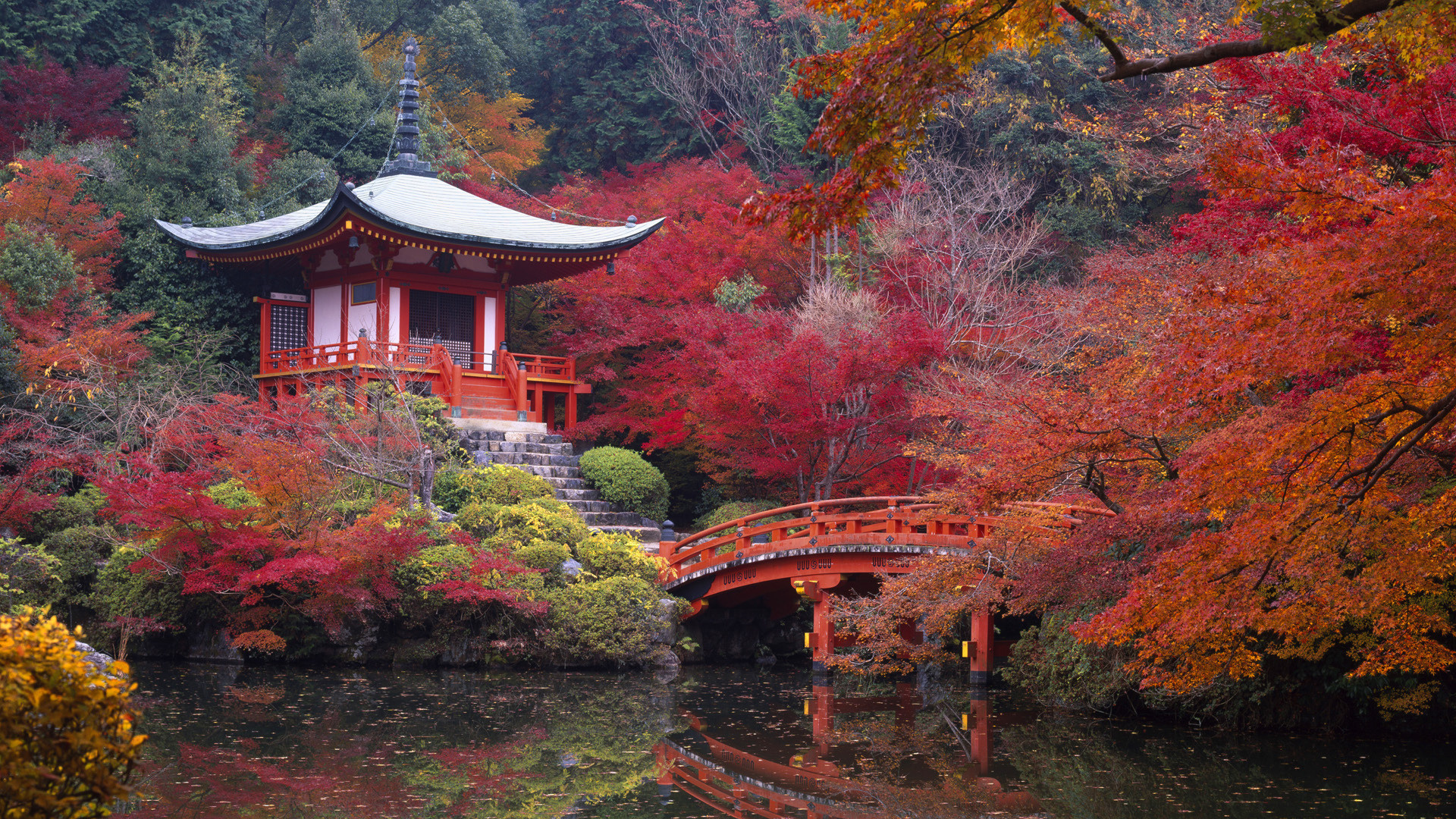 wallpapers and pictures: autumn in china