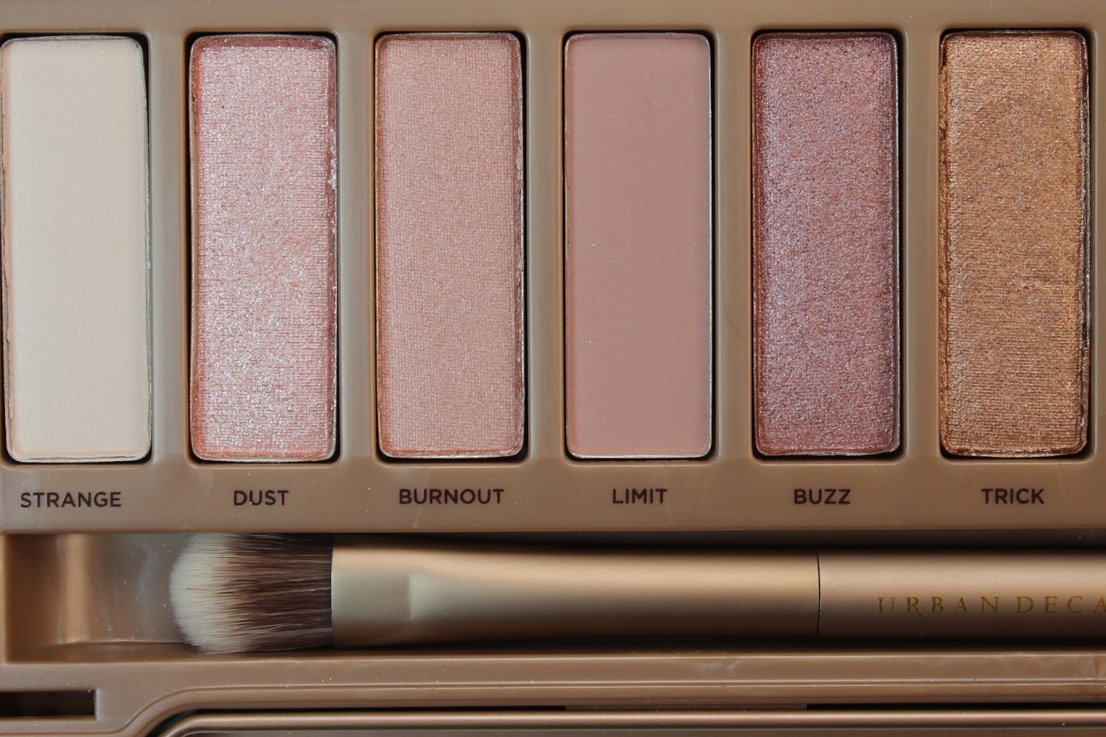 the daily bailey b review swatches urban decay naked. Black Bedroom Furniture Sets. Home Design Ideas