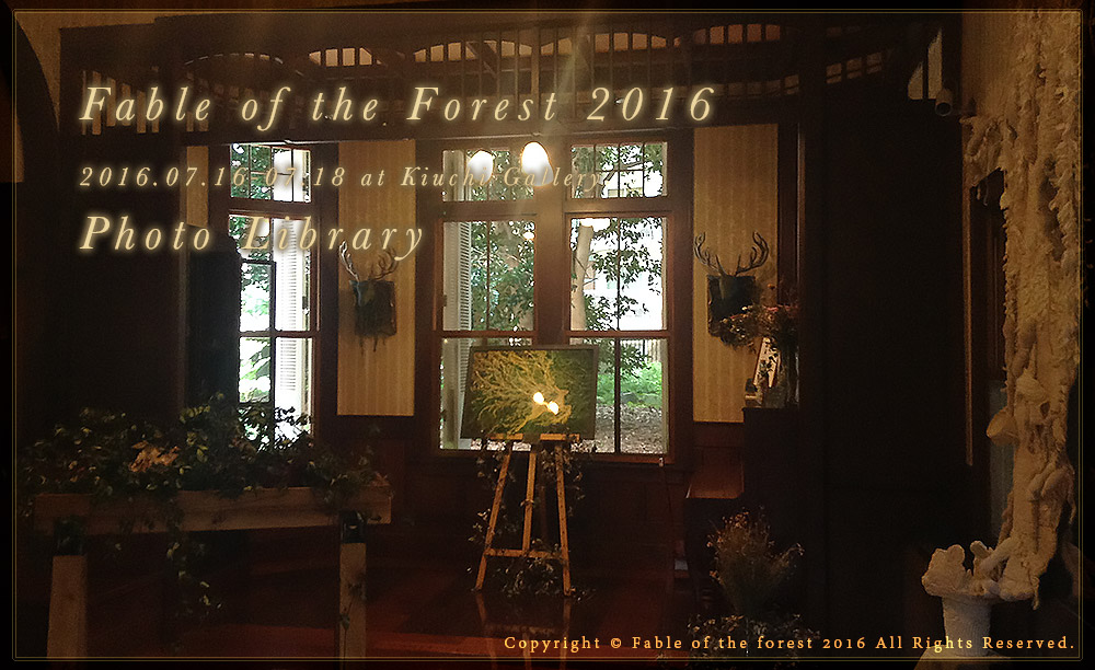 Fable of the forest 2016 - Photo Library