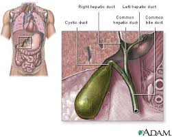 How to survey the Symptoms of Gall Bladder Disease