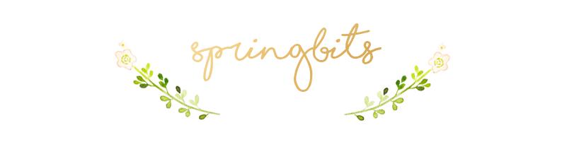 Spring Bits | Belleza, Organización y más