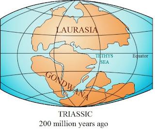 Benua Laurasia dan Benua Gondwana