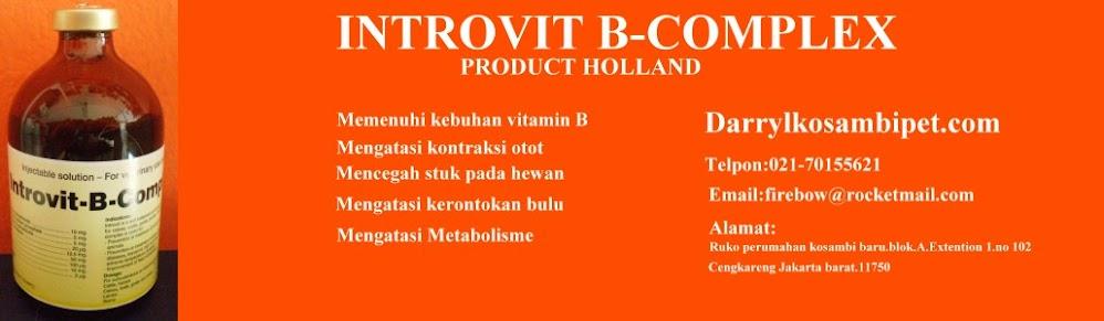 INTROVIT- B - COMPLEX,Vitamin anjing/Hewan