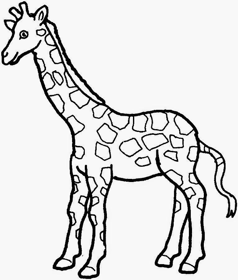 imagens de animais para colorir online - Desenhos para Colorir e Pintar on line Grátis em Colorir