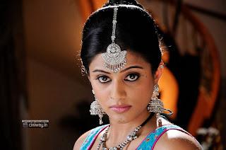 Priyamani-inChandi-Movie-Stills