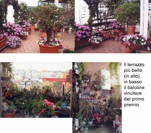 http://2.bp.blogspot.com/-gsA5_PKKdGw/Up4YxFPjuQI/AAAAAAAACoo/PJ7_PBpolmU/s1600/Brindisi+primo+premio+terrazza+balcone.jpg