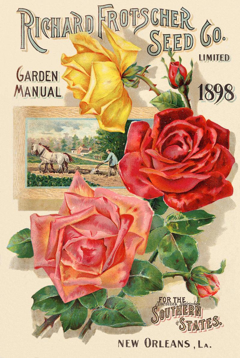 Картинки цветы старинные 3