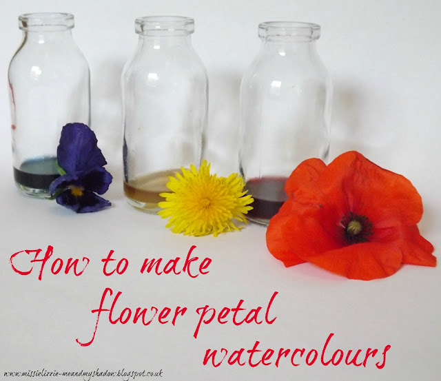 DIY Flower Petal Paints - Natural Art