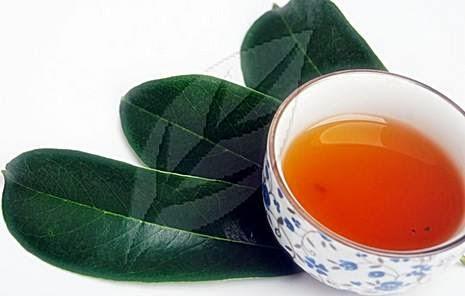 Soursop Leaves Benefits