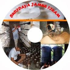 Video CD Budidaya Jamur Tiram