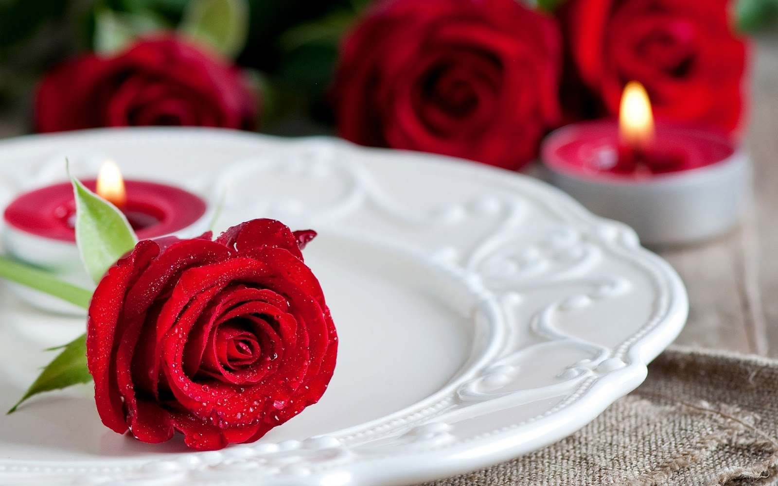 Red Rose on a Plate Wallpaper HD
