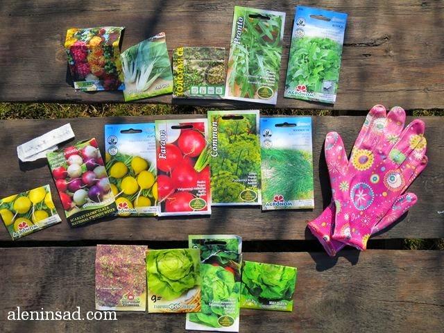 семена, мальвы, пак чой, кориандра, кинзы, рукколы, руколы, салата, редиса, укропа, перчатки садовые, аленин сад, alenin sad, ранний посев зелени