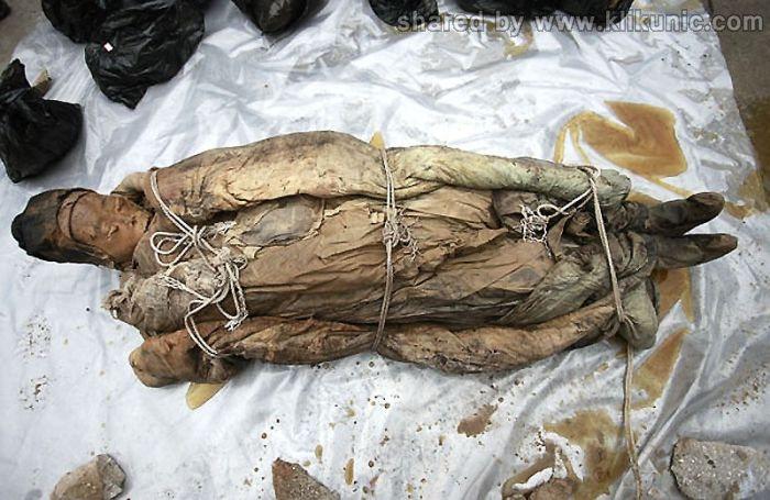 http://2.bp.blogspot.com/-gtX9kWmx6S8/TXiohZwaKtI/AAAAAAAAQuY/2Va0gbuJ6j8/s1600/mummy_13.jpg