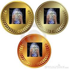 Medalhas Espaço Premium Blogosfera em Rede