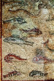 poesia peixos