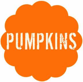 http://todiyornottodiy.blogspot.pt/2013/10/aboboras-pumpkins.html