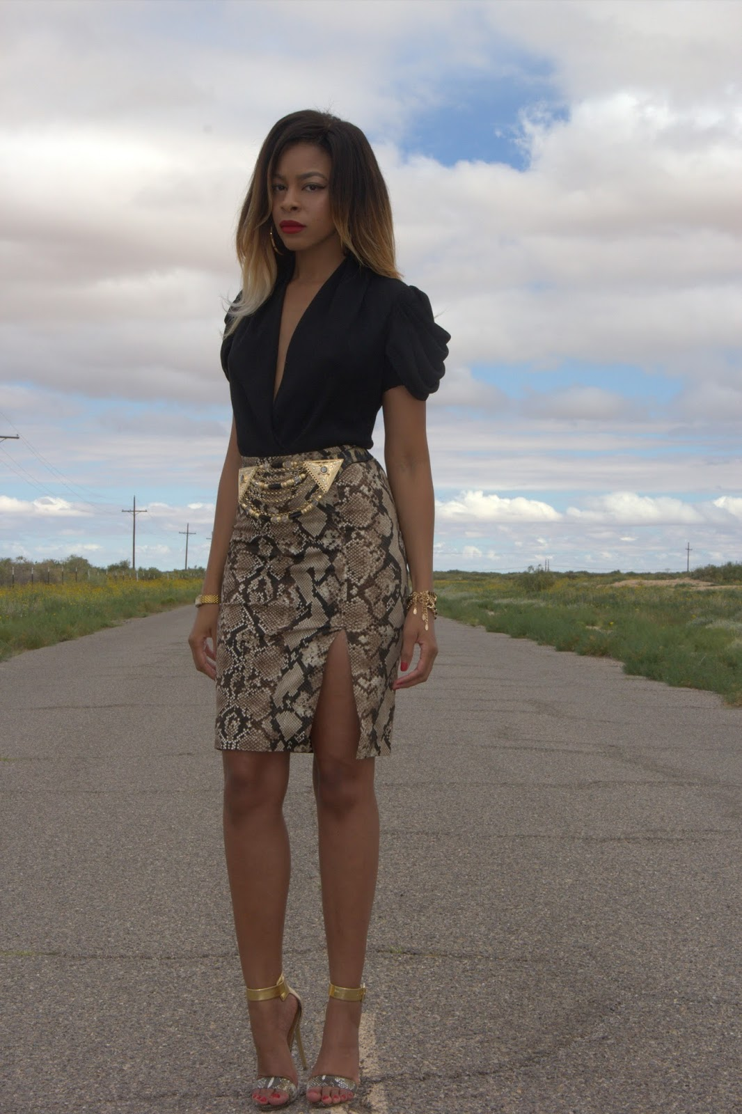 python print pencil skirt, ombre hair, allthingsslim