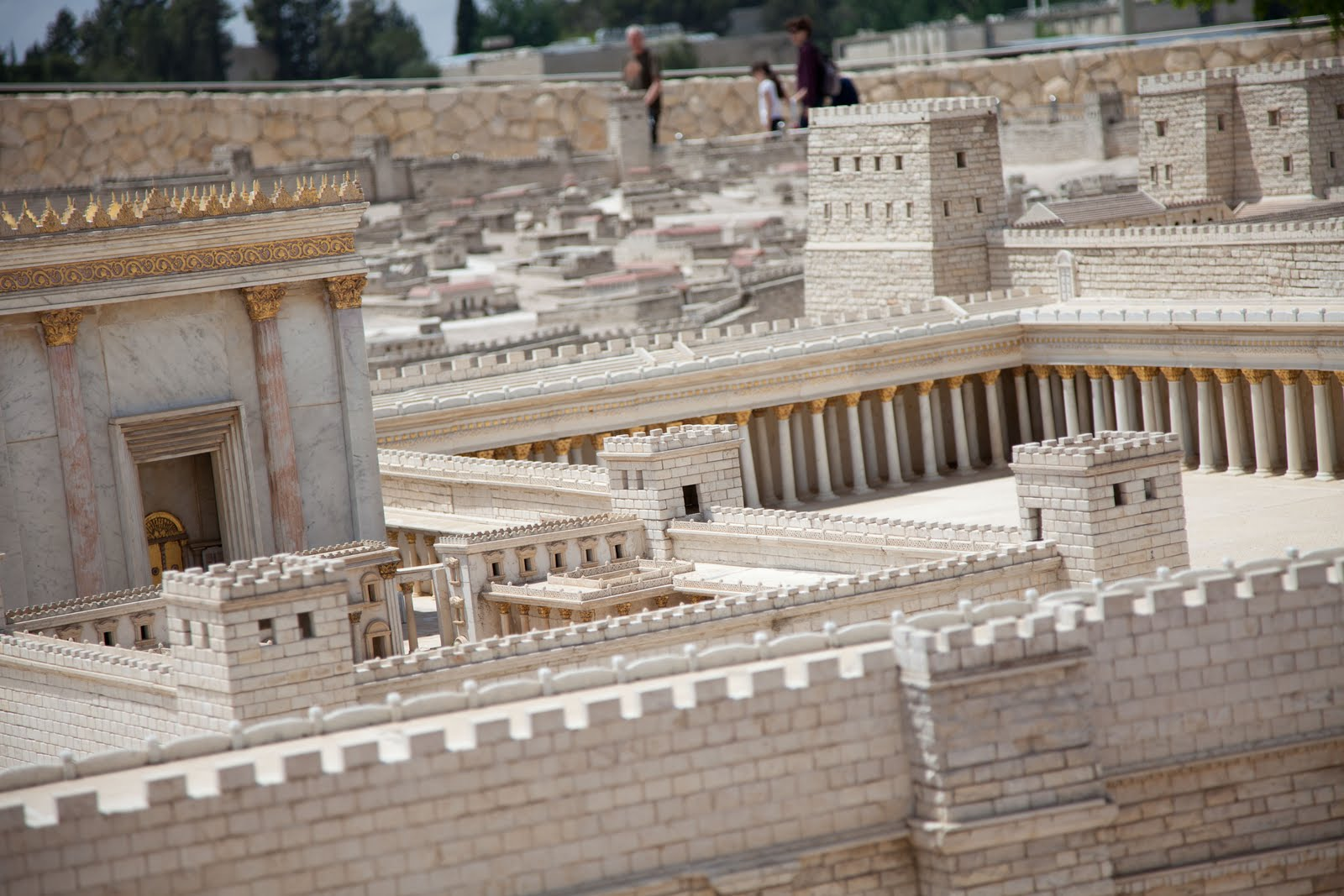 shepherd boy discovered dead sea scrolls accidentally Ancient scrolls discovered in forgotten caves  this shepherd boy had accidentally discovered biblical archaeology's greatest find  until the dead sea scrolls.