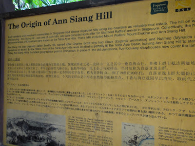 One way lane called Ann Siang Hill Singapore