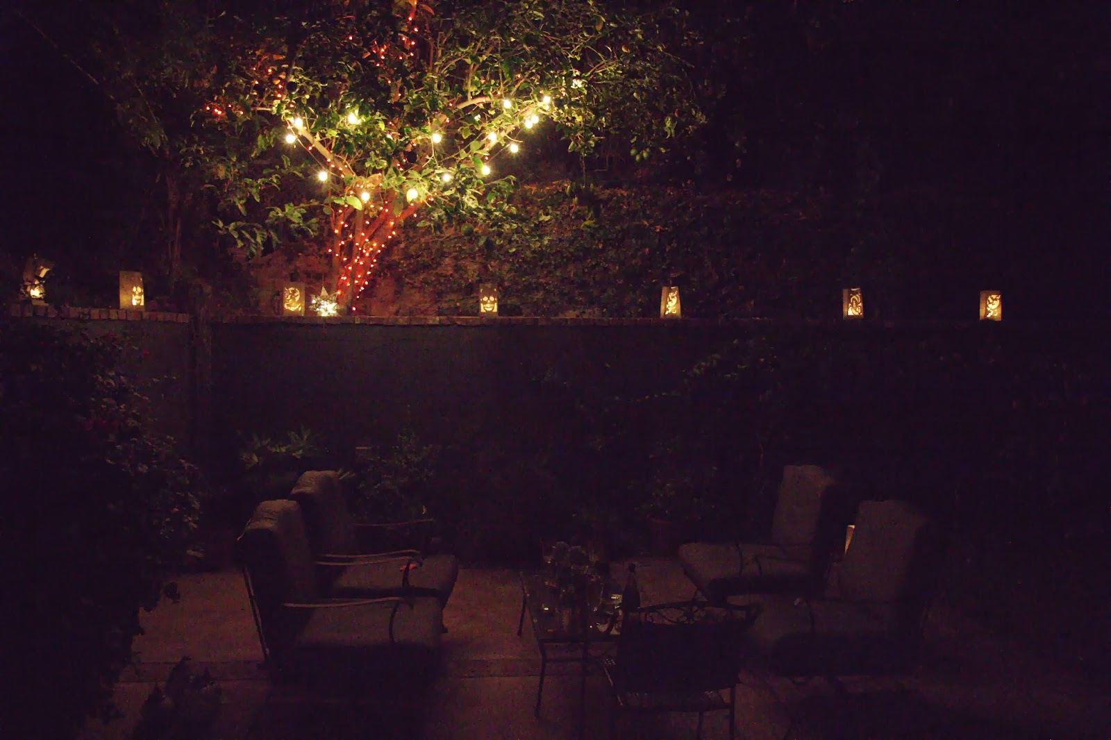 Backyard Lights  - Spooky Glam Halloween Party
