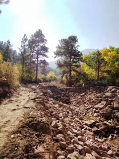 Boulder, trees, rocks