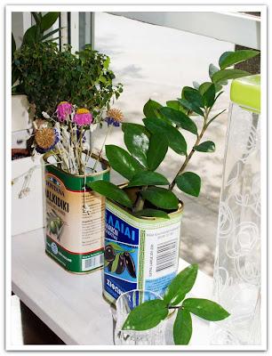 Blomskott i olivburk
