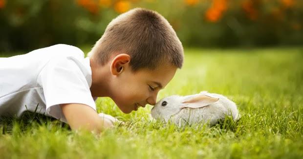 Cómo elegir el nombre de tu mascota. Niño y conejo
