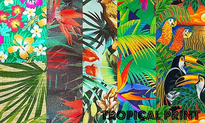 Moda Looks Tropicais on Hibiscus Island Miami