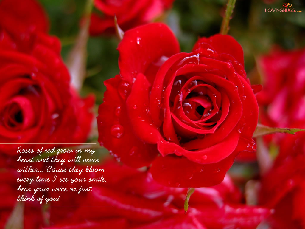 Roses of red grow in my heart for Do black roses grow naturally