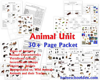 Types of Animals Worksheets