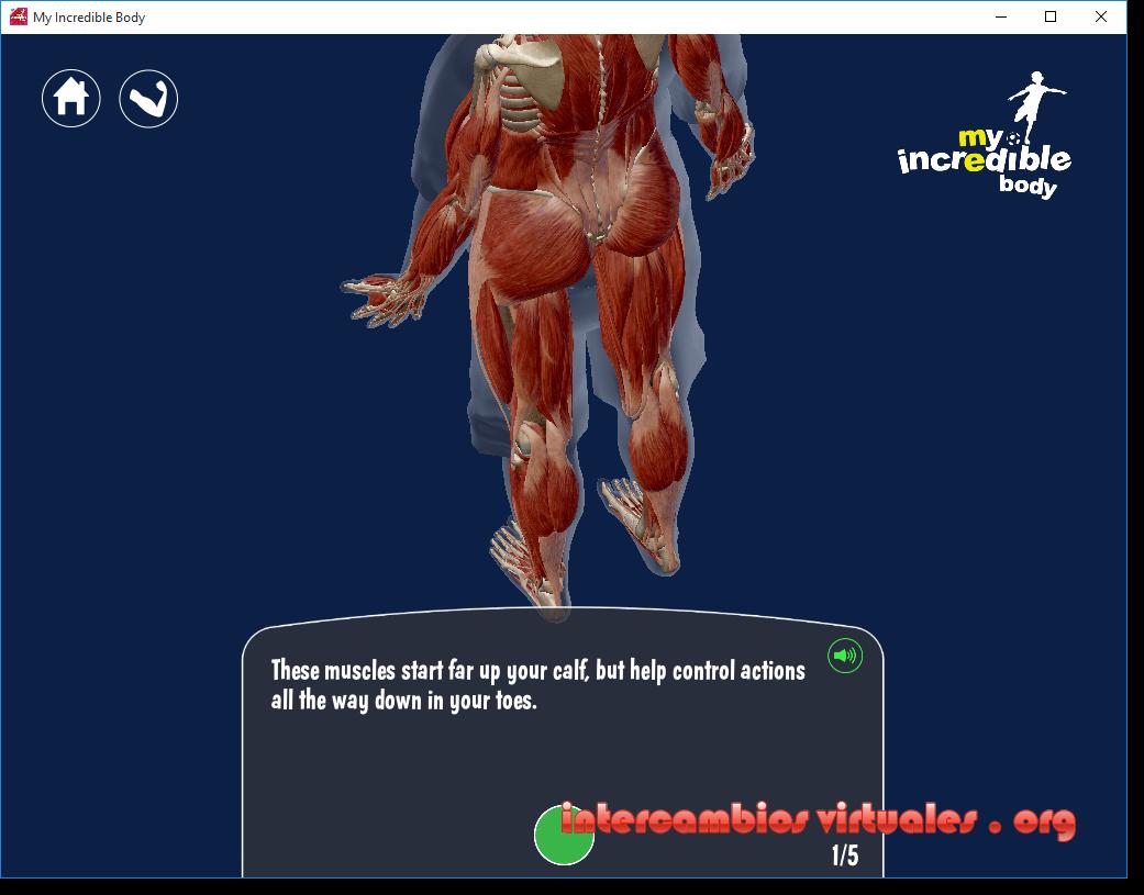 My Incredible Body v3.1.12, Anatomía Para los Niños ...