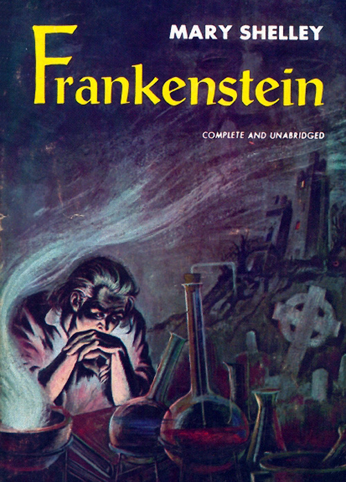 an analysis of mary shelleys novel frankenstein What is scary in frankenstein  creature come to life display the reaction of society to frankenstein as a novel  monster of mary shelleys frankenstein.