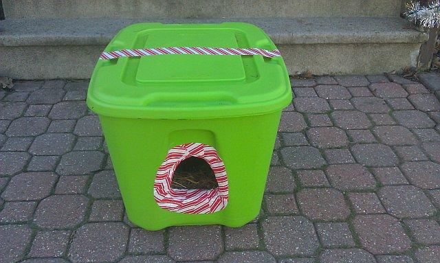Diy outside cat house
