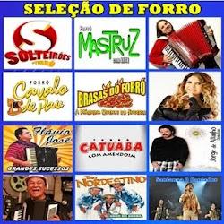 CD- SELEÇÃO DE FORRO - SEM VINHETAS BY DJ HELDER ANGELO